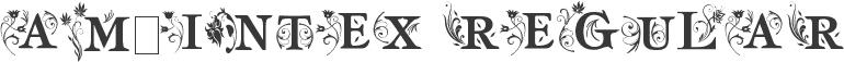 am_intex Regular