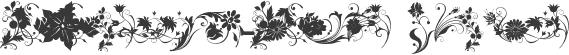 fotograami-flower Regular