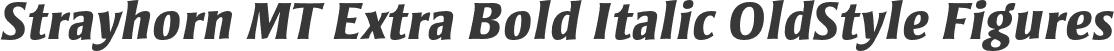 Strayhorn MT Extra Bold Italic OldStyle Figures