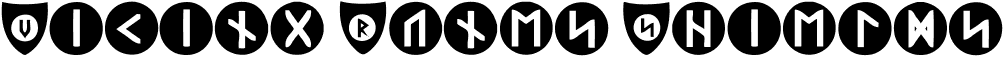 Viking Runes Shields Regular
